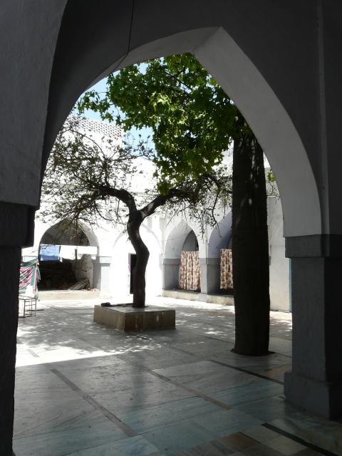02 05 nizamuddin