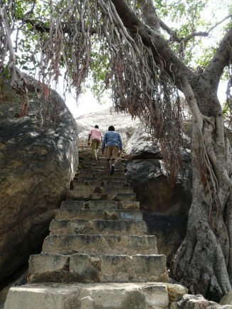 Steps up to rock-cut Jain relief Sculptures, Kalugumalai, Tamil Nadu
