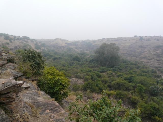 01 03 nareshwar