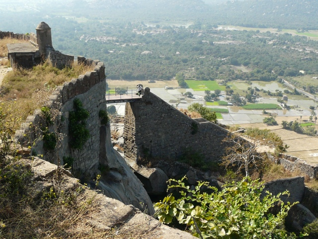 top of rajagiri 01 03